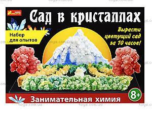 Набор для опытов «Сад в кристаллах», 0262, цена