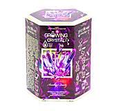 """Набор для проведения опытов """"Growing Crystal"""", фиолетовый, GRK-01-01U, фото"""