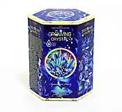 Набор для проведения опытов «Growing Crystal» русский язык, GRK-01-05, купить