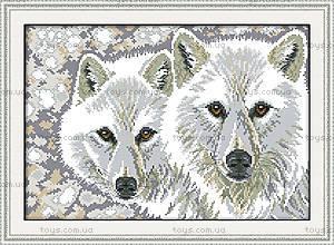 Набор для рукоделия «Волчья пара», D368