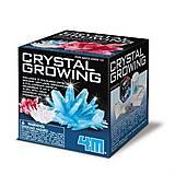 Набор для творчества 4M «Секреты кристаллов», 00-03913/EU, фото