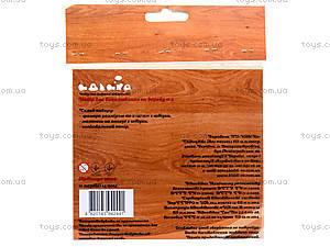 Набор для выжигания по дереву «Домашние любимцы», 96229, купить