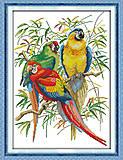 Набор для вышивки «Яркие попугаи», D213