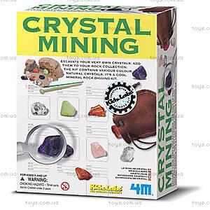 Набор «Геологические раскопки кристаллов», 00-03252