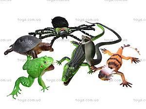 Набор игрушечных рептилий, HB99886S, цена