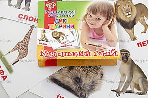 Набор карточек «Дикие животные» на украинском языке, 951906