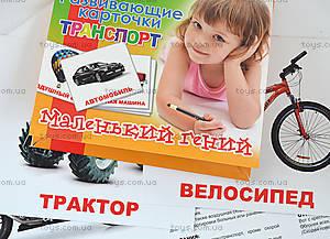 Набор карточек «Транспорт», 951295