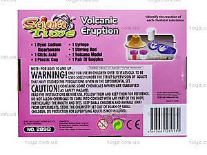 Набор для опытов «Химический вулкан», 28913-EC, купить