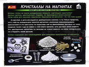 Набор для творчества «Кристаллы на магнитах», белый, 0383, купить