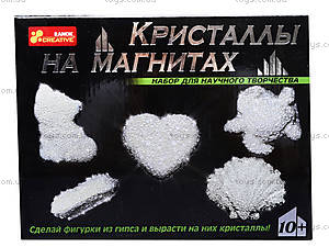 Набор для творчества «Кристаллы на магнитах», белый, 0383, фото