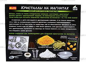 Набор «Кристаллы на магнитах», желтый, 0384, купить