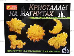 Набор «Кристаллы на магнитах», желтый, 0384, фото