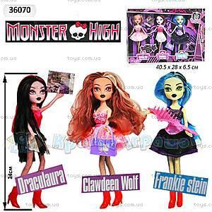 Набор «Кукла Monster High с аксессуарами», 36070