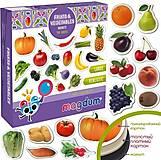 """Набор магнитов """"Фрукты и овощи"""" (ML4031-15 EN), ML4031-15 EN"""