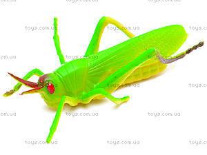 Набор насекомых, 12 штук, HB9601/12, іграшки