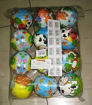 Набор паролоновых мячей для деток, 1702-13