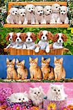 Набор пазлов MINI на 105 деталей «Животные», A-10503-Z, купить