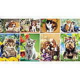 Набор пазлов MINI на 80 детали «Животные», A-08514-Z, отзывы