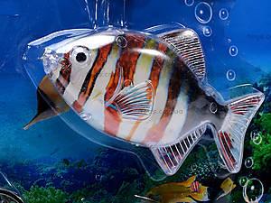 Набор «Рыбалка», 4 рыбки, 2688, отзывы