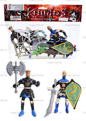 Набор рыцарей с оружием, 978-65