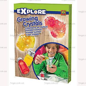 Набор для выращивания кристаллов серии «Исследователь», 250171S