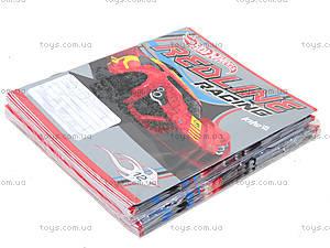Набор тетрадей Hot Wheels, 12 листов, HW14-232K, купить