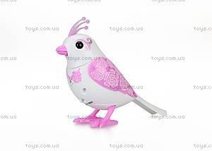 Набор интерактивных птичек DigiBirds «Неразлучники», 88388, игрушки