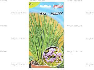 Набор юного садовода «Занимательная ботаника. Лук», 0364, фото