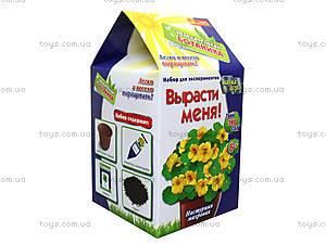 Урок занимательной ботаники «Настурция», 0367, купить