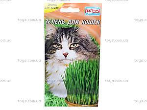 Уроки занимательная ботаника «Трава для кота», 0365, фото