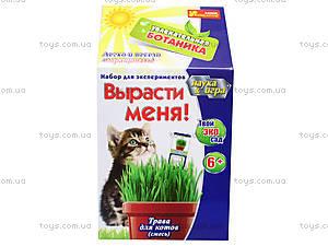 Уроки занимательная ботаника «Трава для кота», 0365