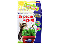 Уроки занимательная ботаника «Трава для кота», 0365, отзывы