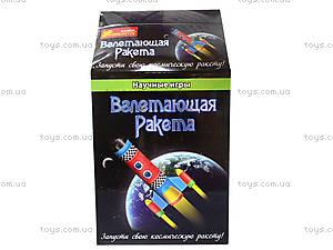 Научные мини-игры «Летающая ракета», 0386, цена