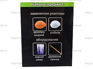 Научные мини-игры «Вулкан на столе», 0335, фото