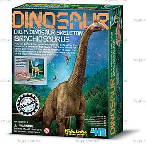 Научные раскопки «Брахиозавр», 00-03237