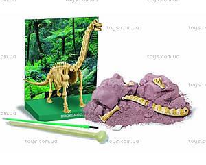 Научные раскопки «Брахиозавр», 00-03237, фото