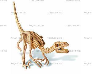 Научные раскопки динозавра Велоцираптора, 00-13234, купить