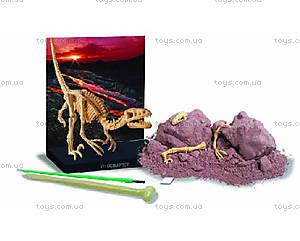 Научные раскопки динозавра Велоцираптора, 00-13234, фото