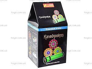 Научные игры «Калейдоскоп», 12116011Р