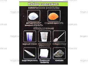 Научные игры мини «Выращиваем кристаллы», 12116005Р, фото