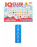 IQ-club для малышей «Вивчаємо пори року», 13203001У, детские игрушки