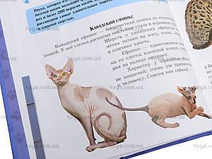 Книга «Самое интересное о кошках», С14274Р, отзывы