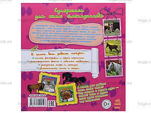 Книга для детей «О лошадях», С14276Р, купить