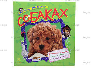 Книга для детей «О собаках», С14281Р