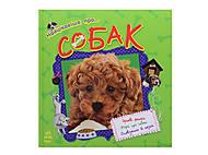 Детская книга «О собаках», С14280У, отзывы
