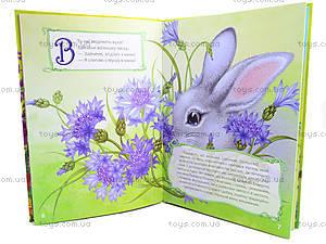 Детская книга «Цветочная азбука», Талант, купить