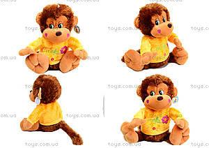 Музыкальная игрушка «Обезьяна в цветной кофте», M-ZY43250