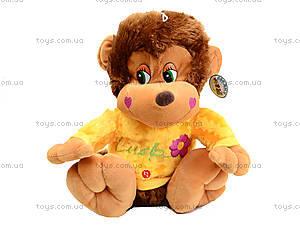 Музыкальная игрушка «Обезьяна в цветной кофте», M-ZY43250, цена