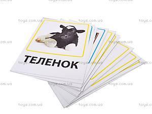 Обучающие карточки «Ферма и профессии», VT1301-03, купить