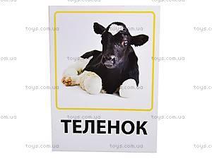 Обучающие карточки «Ферма и профессии», VT1301-03, отзывы